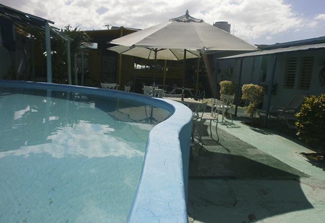 Pool-und-Garten